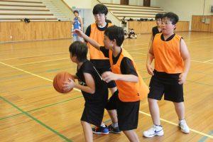 Leibchen im Sport